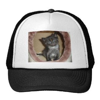 Cute Fuzzy Baby Kitty Love Trucker Hat