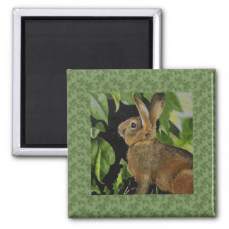 Cute Garden Bunny 2 Inch Square Magnet