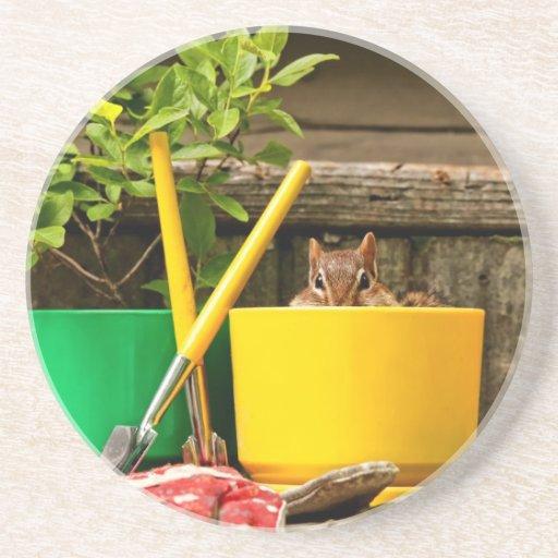 Cute Gardening Chipmunk Drink Coaster Zazzle
