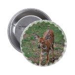 Cute Gazelle Pinback Button