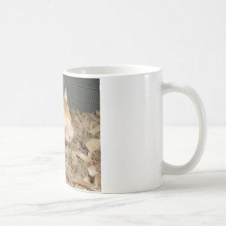 Cute Gerbil Classic White Coffee Mug