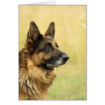 Cute German Shepherd  Greeting Cards