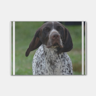 Cute German Shorthaired Pointer Post-it® Notes