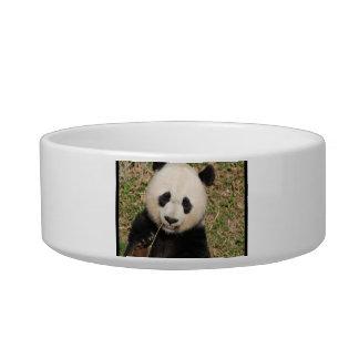 Cute Giant Panda Bear Bowl