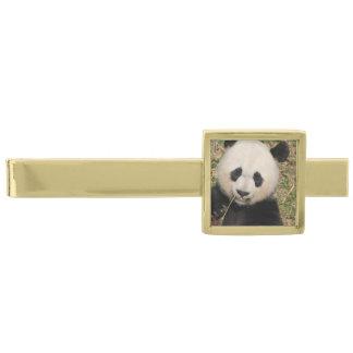 Cute Giant Panda Bear Gold Finish Tie Bar