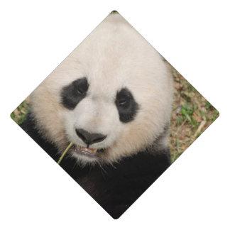 Cute Giant Panda Bear Graduation Cap Topper