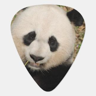 Cute Giant Panda Bear Guitar Pick