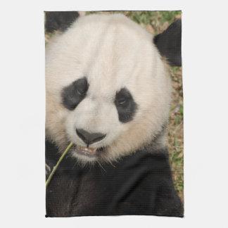 Giant Panda Kitchen Towels Zazzle