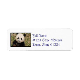 Cute Giant Panda Bear Label