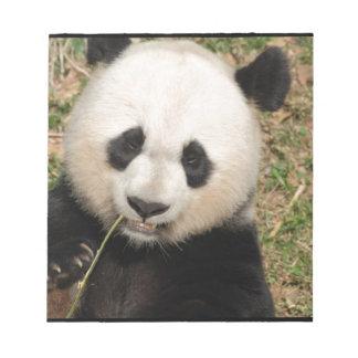 Cute Giant Panda Bear Notepad