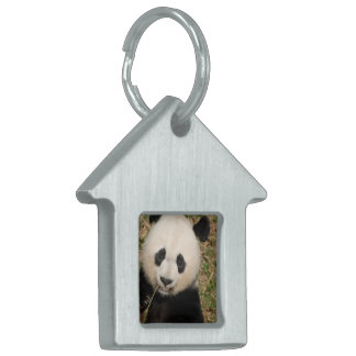 Cute Giant Panda Bear Pet ID Tag