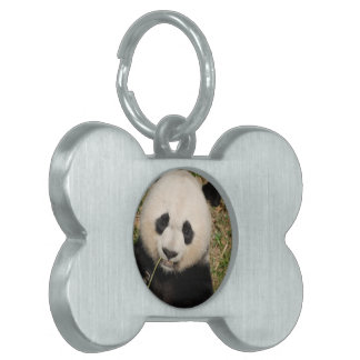Cute Giant Panda Bear Pet Name Tag
