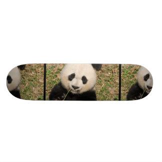 Cute Giant Panda Bear Skateboard