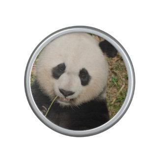 Cute Giant Panda Bear Speaker