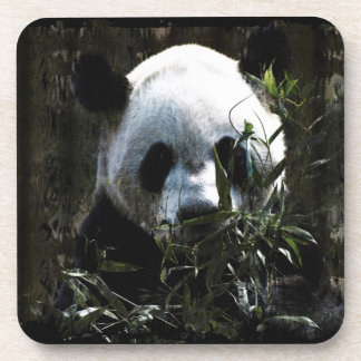 Cute Giant Panda Bear with tasty Bamboo Leaves Beverage Coasters