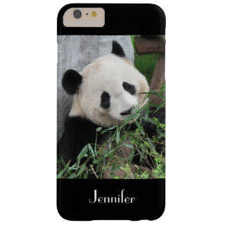 Cute Giant Panda, Black Background, Custom Name Barely There iPhone 6 Plus Case