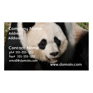 Cute Giant Panda Business Card Templates