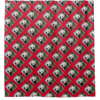 Cute Giant Panda Shower Curtain on Cherry Red