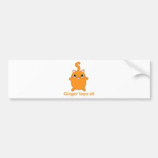 cute ginger cat bumper stickers