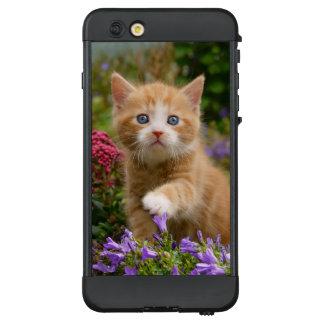 Cute Ginger Cat Kitten Garden Photo -_  waterproof LifeProof® NÜÜD® iPhone 6 Plus Case