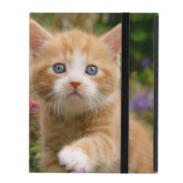 Cute Ginger Cat Kitten Garden, protective hardcase iPad Cover