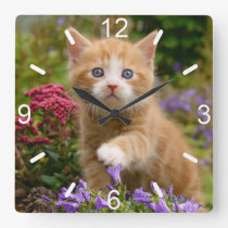 Cute Ginger Cat Kitten in Garden Photo  dial-plate Square Wall Clock