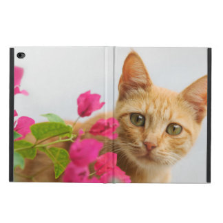 Cute Ginger Cat Kitten Watching Portrait Hardcase Powis iPad Air 2 Case