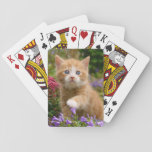 "Cute ginger kitten in a garden playing cards<br><div class=""desc"">A lovely and enchanting kitten playing with flowers in a garden. A cute baby cat with wonderful blue eyes photographed by Katho Menden. A gift for catlovers  http://www.zazzle.com/kathom_photo</div>"