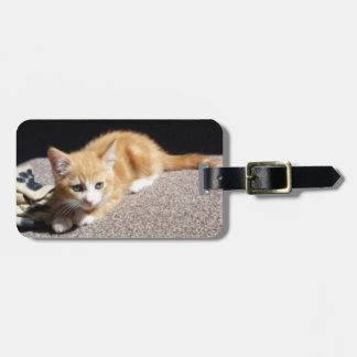 Cute Ginger Kitten Tags For Bags