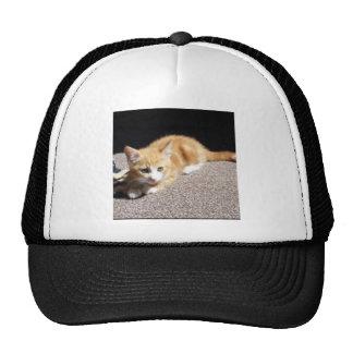 Cute Ginger Kitten Trucker Hat