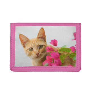 Cute Ginger Kitten Watching You, Pink Purse Trifold Wallet
