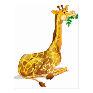Cute giraffe chewing on leaves postcard