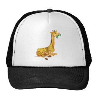 Cute giraffe chewing on leaves trucker hat