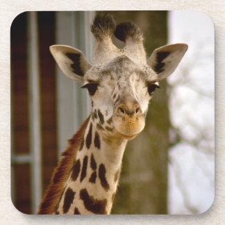 Cute Giraffe Cork Coaster