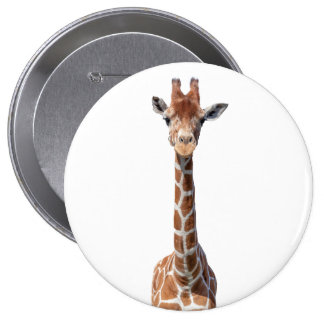 Cute giraffe face button