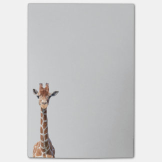 Cute giraffe face post-it® notes