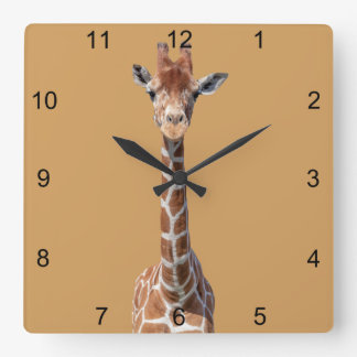 Cute giraffe face square wall clock