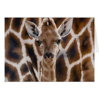 cute giraffe happy birthday card