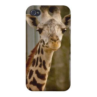 Cute Giraffe iPhone 4 Covers