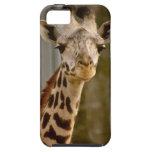 Cute Giraffe iPhone 5 Case