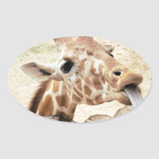 Cute Giraffe Licking Oval Sticker