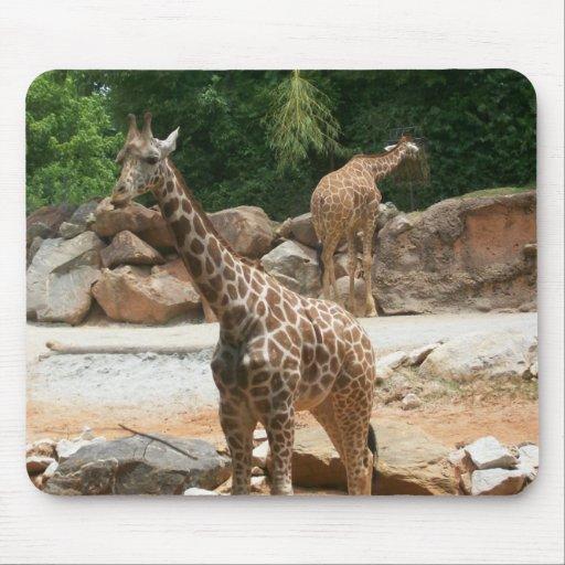 Cute Giraffe Mousepad