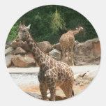 Cute Giraffe Stickers
