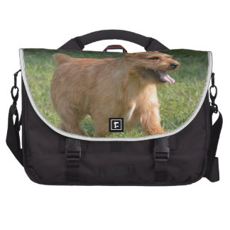 Cute Glen of Imaal Terrier Laptop Bag