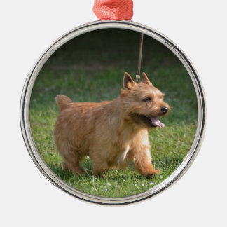 Cute Glen of Imaal Terrier Round Metal Christmas Ornament