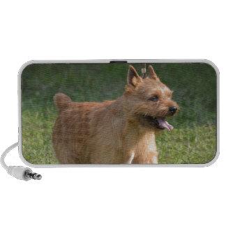 Cute Glen of Imaal Terrier PC Speakers