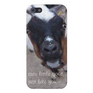 cute goat iphone case iPhone 5 case