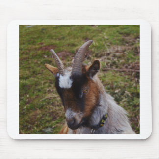 Cute Goat. Mouse Pad