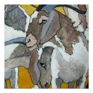 Cute Goats Cuddling Poster