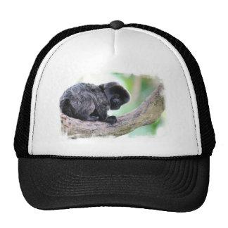 Cute Goeldi Trucker Hat